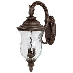 Capital Lighting Fixture Ashford 10 in. 60 W 3-Light Candelabra Wall Lantern C9783