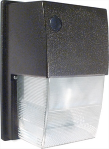 Rab Electric Manufacturing 70W 1-Light ED17 Medium Tall RWPTS70
