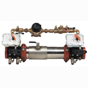Ames Fire & Waterworks C300 C300 Double Detector Check Valve with Butterfly Valve AC300BFGG