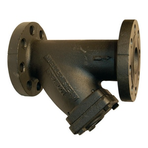 Mueller Steam Specialty 250# Wye Strainer with Blow-Off Outlet M752