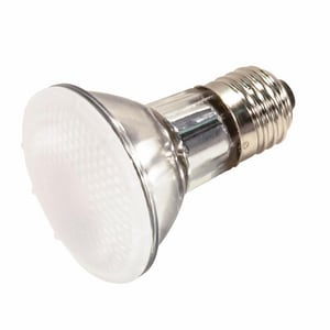 Satco 120 V Frosted Bulb SS4100