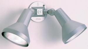 Nuvo Lighting 2-Light Outdoor Flood Light in Grey N77703