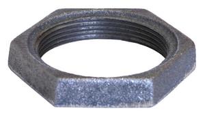 1 in. Galvanized Locknut GLNG
