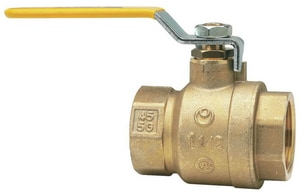 Watts 1 in. 600 psi 2-Piece Threaded Brass Full Port Ball Valve WFBV3CG