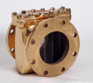 Neptune Technology Group Bronze Strainer N52000402