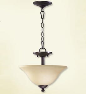 Quorum International Spencer 2-Light Medium E-26 Base Incandescent Ceiling Light Q281013