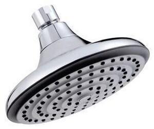 Danze Riverwide™ 2.5 gpm Showerhead DD460003