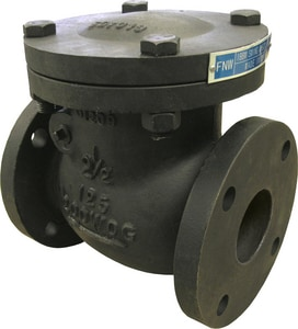 FNW 125# Flanged Cast Iron Swing Check Valve FNW671