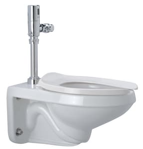 Zurn Industries 1.28 gpf Elongated Toilet ZZ5615213000000