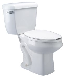 Zurn Industries Combination Elongated Front Pressure Assist Toilet ZZ5572