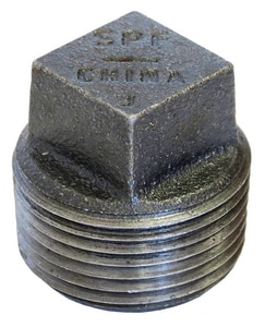 Smith-Cooper 300# Black Ductile Iron Plug IBDIP