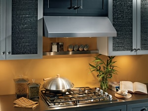 Broan Nutone 30 in. Under Cabinet Multi-Speed Range Hood BAP130