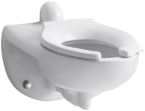 Kohler Kingston™ Elongated Wall Mount Toilet Bowl with Rear Inlet and Bedpan Lugs in White K4323-L-0