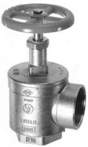 Fire-End & Croker 2-1/2 in. 300 psi Female x Female Angle Hose Valve F5045CB