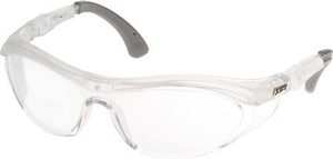 Fairway Flanker Glasses Safety Glasses with Balck Frame LEFR6C