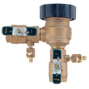 Watts Freeze Resistant Pressure Vacuum Breaker WLF800M4FR