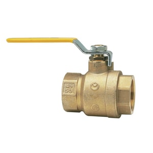 Watts 600 psi 2-Piece Female Threaded Copper Silicon Alloy Full Port Ball Valve WLFFBV3CM