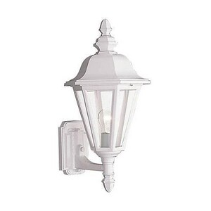 Seagull Lighting Brentwood 10-1/4 in. 100 W 1-Light Medium Lantern S8824
