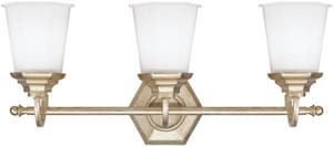 Capital Lighting Fixture Fifth Avenue 10 x 23-1/4 in. 100 W 3-Light Medium Bracket C1068WG101