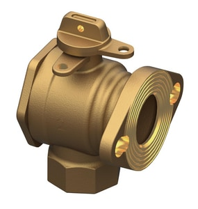 Ford Meter Box 2 x 2-13/16 in. FIP x Meter Flanged Angle Ball Valve with Lock Wing FBFA13777WRNL