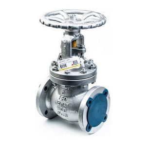 Neway Valve 150# Carbon Steel Flanged Outside Stem and Yoke Globe Valve NGL1RA8