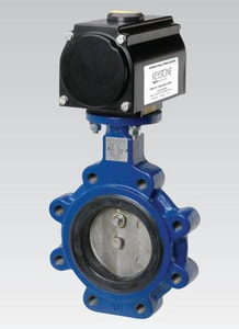 Pentair Valves & Controls Keystone Cast Iron EPDM Lug Lever Operator Butterfly Valve P222789H