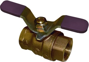 FNW 2-6/50 in. Threaded Brass Full Port Ball Valve FNW410ANH