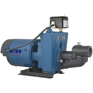 Flint & Walling Shallow Well Jet Pump FCPJS