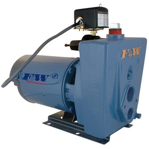 Flint & Walling Jet Pump with Convertible Ejector FCPJ10B