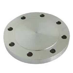 150# 316L Stainless Steel Blind Raised Face Flange IS6LRFBFE