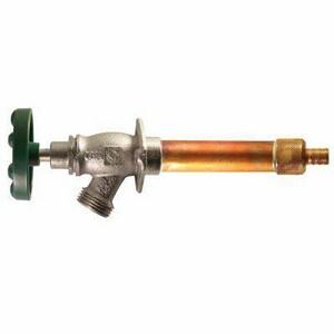 Champion-Arrowhead PEX Anti-Siphon Frost Proof Hydrant C469BCLD