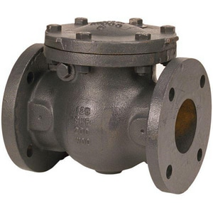 Nibco 125# Flanged Lockwing Check Valve NF918BLW