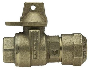 Mueller Steam Specialty Ball Valve with Light Weight MB25170N
