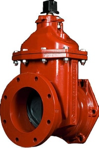 American Flow Control 2500 Series 10 in. Push-On Resilient Wedge Gate Valve with Gasket AFC2510TTWGOL