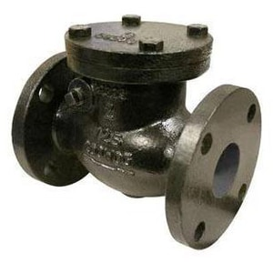FNW 125# Cast Iron Flanged Swing Check Valve FNW671A