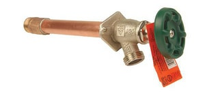 Champion-Arrowhead 3/4 in. Sweat x MIP Anti-Siphon Frost Proof Hydrant C468QTBCLD