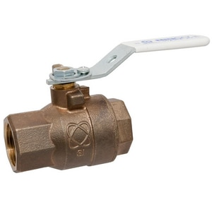 Nibco 2-Piece Bronze NPT Full Port Ball Valve with Memory Stop NT58580LFM