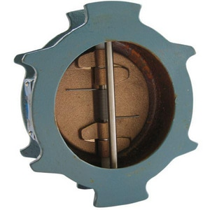 Nibco 250# Ductile Iron Wafer Check Valve NKW900WLF