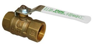 FNW 600 WOG 2-Piece Brass Threaded Ball Valve FNWX415H