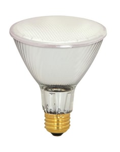 Satco 130V 2900K Halogen Bulb SS4210