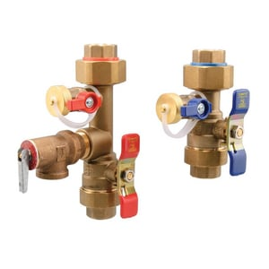 Watts Tankless Water Heater Valve with Female Pipe Threaded End Connection WLFTWHUTSHCNRVF