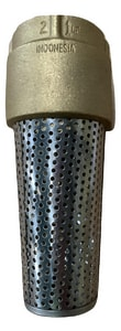 PROFLO Brass Foot Valve with Stainless Steel Strainer PFXBFV