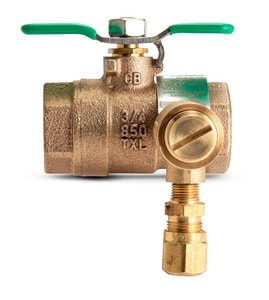 Wilkins Regulator 3/4 in. FNPT Ball Valve WBVECXL125CFF