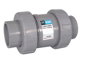 Hayward Industrial Products Socket x Threaded PVC Check Valve with FPM Seat HTC100ST