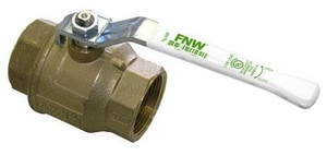 FNW 600 WOG 2-Piece Brass FIP Full Port Ball Valve FNWX420A