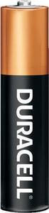 Duracell Size AAA Batteries DMN2400B4Z