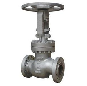 Newco Valves CB3 Cast Carbon Steel Flanged Extension Globe Valve N21FCB3