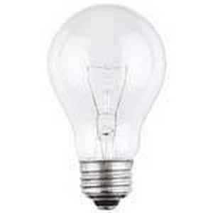 Westinghouse Lighting A19 Incandescent Light Bulb with Medium Base W0411200