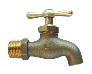 American Granby 3/4 in. Brass MIP x Spout Hose Bibb AHHB75NHTNL