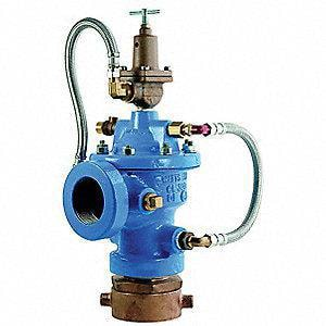 Watts 2 in. Ductile Iron Fire Hydrant Relief Valve WLFF1116FHK